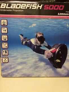 Sea jet bladefish