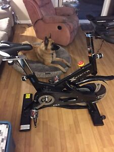 Xterra 6.5 brand new! Barely used! Dog not included