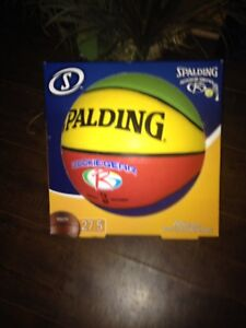 Spalding Youth sized basketball.