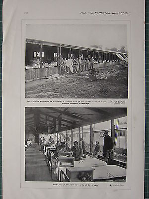 1916 WWI WW1 PRINT ~ OPEN-AIR TREATMENT FOR WOUNDED GENERAL HOSPITAL CAMBRIDGE Open Wound Treatment