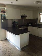 Kitchen entire Coolum Beach Noosa Area Preview