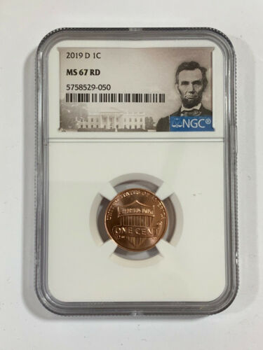 2019-D Lincoln Shield Cent NGC MS 67 RD * Rare quality! Nice! *