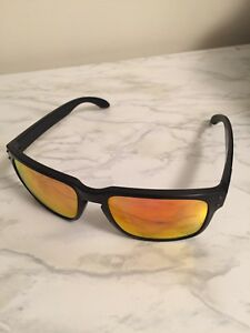 Oakley Holbrook Polarized Glasses