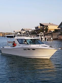 Boat Sportcraft Hardtop - fishing (Haines Whaler Trophy Riviera)