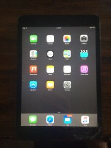 Black iPad  mini 16gb