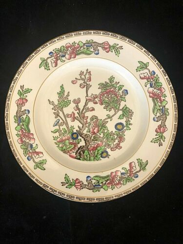 """ANTIQUE ALFRED MEAKIN """" INDIAN TREE"""" 8 SALAD PLATES"""