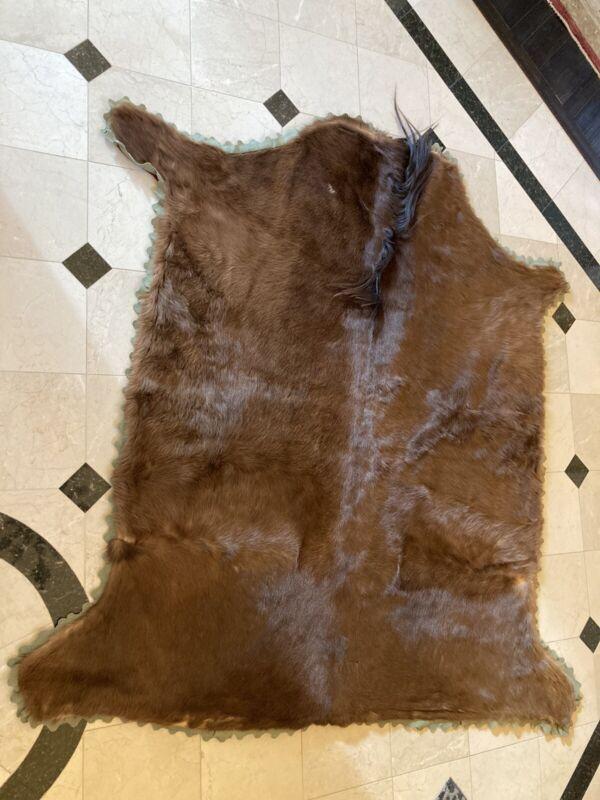 Antique Horse Hide Sleigh Blanket