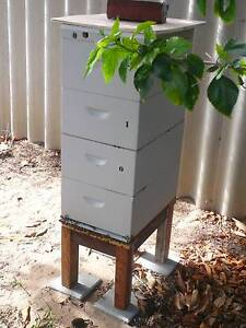 BEE HIVE FOR SALE White Gum Valley Fremantle Area Preview