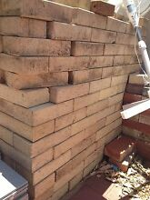 FREE cream brick pavers Scarborough Stirling Area Preview