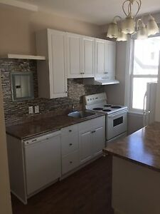 Spacious 1 Bedroom renovated flat on Main Ave