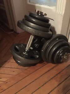 Dumbbell weights and handles