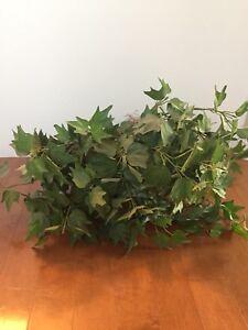 Artificial Plant Make an offer