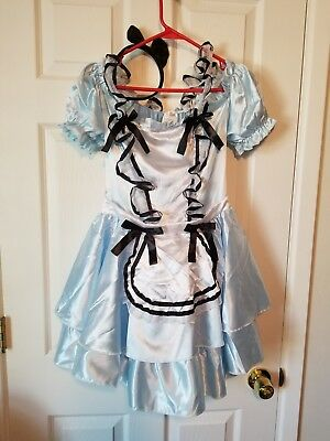 Alice In Wonderland Costume - Sz Adult Small 4-6 Halloween Dress up](Alice In Wonderland Dress Costume)