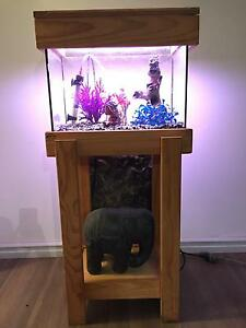 Glass One Fish Tank Wanneroo Wanneroo Area Preview