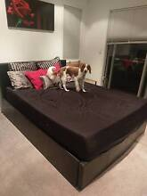 Queen size bed with storage and mattress Woonona Wollongong Area Preview