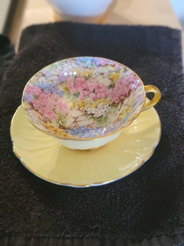 Shelley Oleander Rock Garden Chintz Teacup and  Saucer