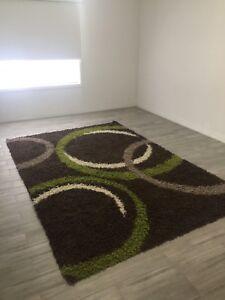 Modern shaggy rug