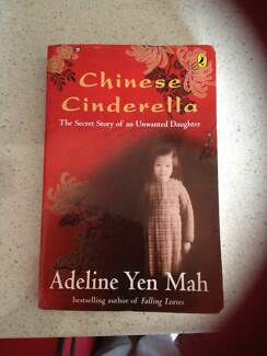 What are your opinions of Chinese Cinderella?