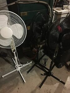 Oscillating stand and desk fans