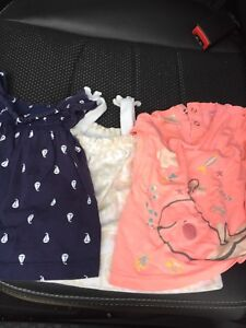 Lot of girls clothing  6 months to 18 months