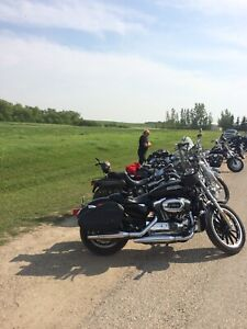 Harley | Browse Local Selection of Used & New Cars & Vehicles in