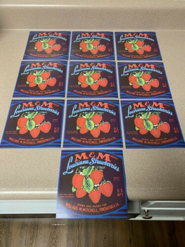 10 ORIGINAL FRUIT CRATE LABELS M & M BRAND LOUISIANA STRAWBERRIES - LA