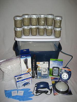 Ultimate Mushroom Growing Kit - 12 Jars  Grow Mushrooms Fast!