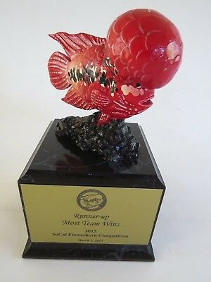 Kamfa United Flowerhorn Association Fish Trophy figurine statue cichlids award