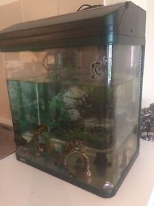 Fish tank with accessories West Lakes Charles Sturt Area Preview