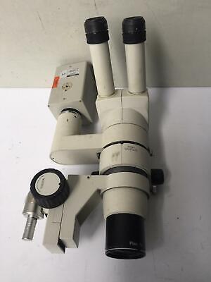 Nikon Smz800 With Hc-300zi