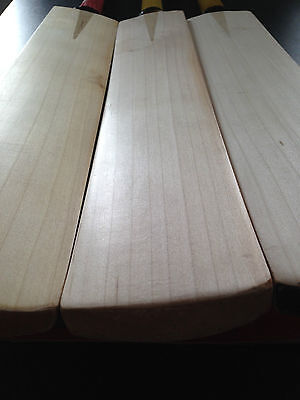 GRADE 1 ENGLISH WILLOW CRICKET BAT