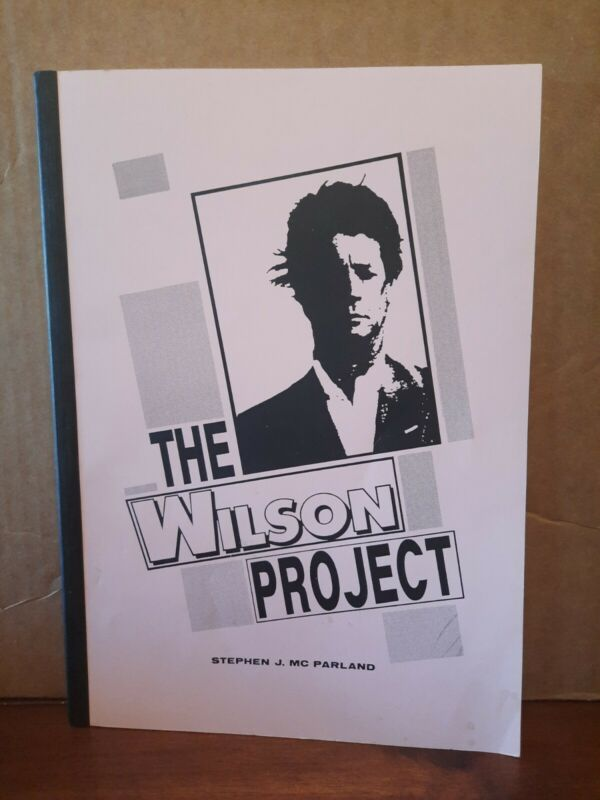 The Wilson Project - Stephen Mc Parland Book - Brian Wilson Gary Usher 1991