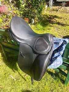 17.5 Stubben Scandica dressage saddle Kendenup Plantagenet Area Preview