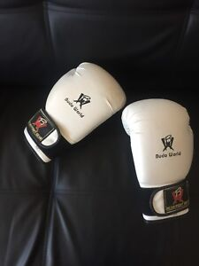 Boxing Gloves $15