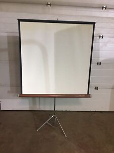 52 Projection Screen $80 old style!