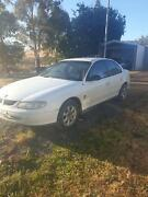 $850 cash today vt Commodore Ellendale Central Highlands Preview