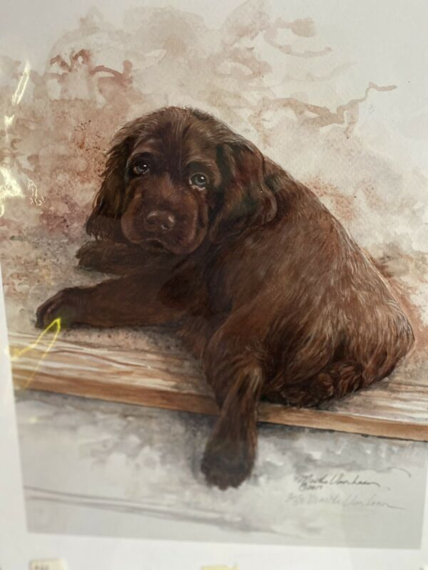 Sussex Spaniel Puppy 2/50 11x14 Print Signed Van Loan