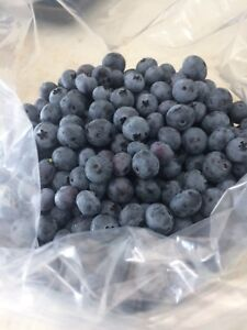 Fresh and frozen blueberries