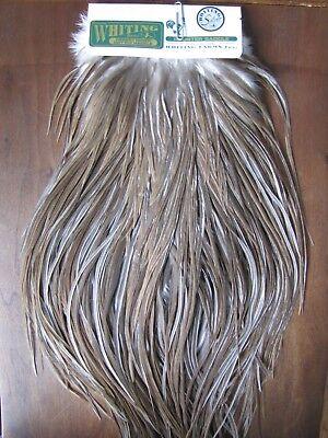 Fly Tying Whiting Silver Rooster Midge Saddle White dyed Dark Dun #B Angelsport-Artikel Angelsport-Köder, -Futtermittel & -Fliegen