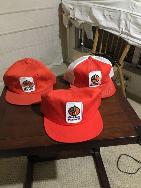 Vintage Golden Harvest Seed Co Hat Lot Of 3 K Brand Snapback Trucker