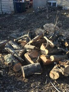 Giving away solid firewood