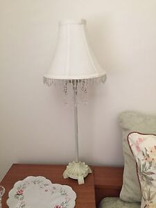 2 x lamps Durack Brisbane South West Preview