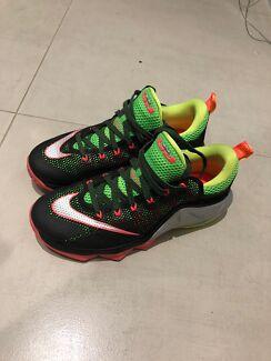 Nike lenton Xll