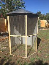 Bird Aviary Kiara Swan Area Preview