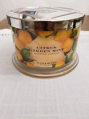 Homeworx by Harry Slatkin Citrus Garden Mint Candle