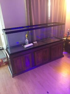 125 gallon and stand