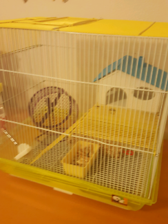 2 Female mice with cage and accessories