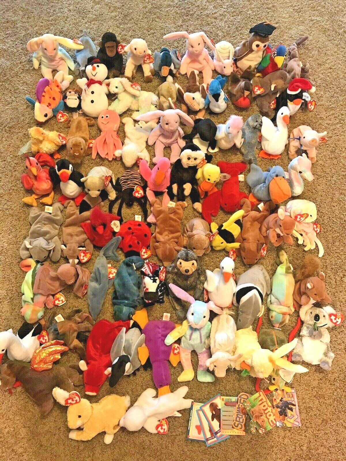 80 Huge NEW Ty Lot Beanie Baby Babies Animal Set Party Favor