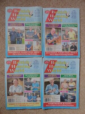 4x British Homing World racing pigeon birds magazines back issue July 2019