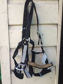 Halters bling bling pony Adamstown Newcastle Area Preview